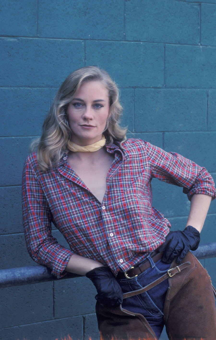 cybill shepherd photos