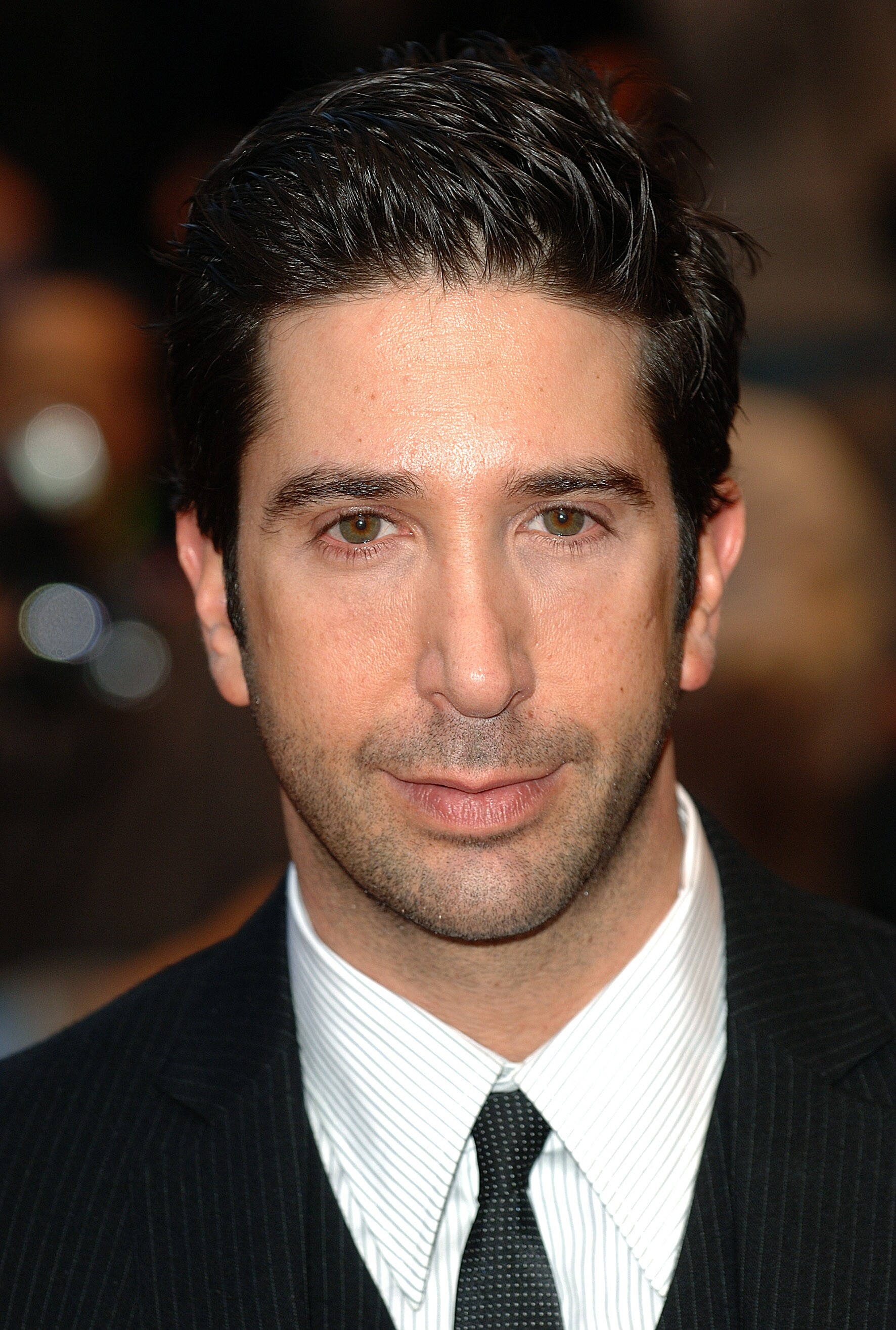 david schwimmer home