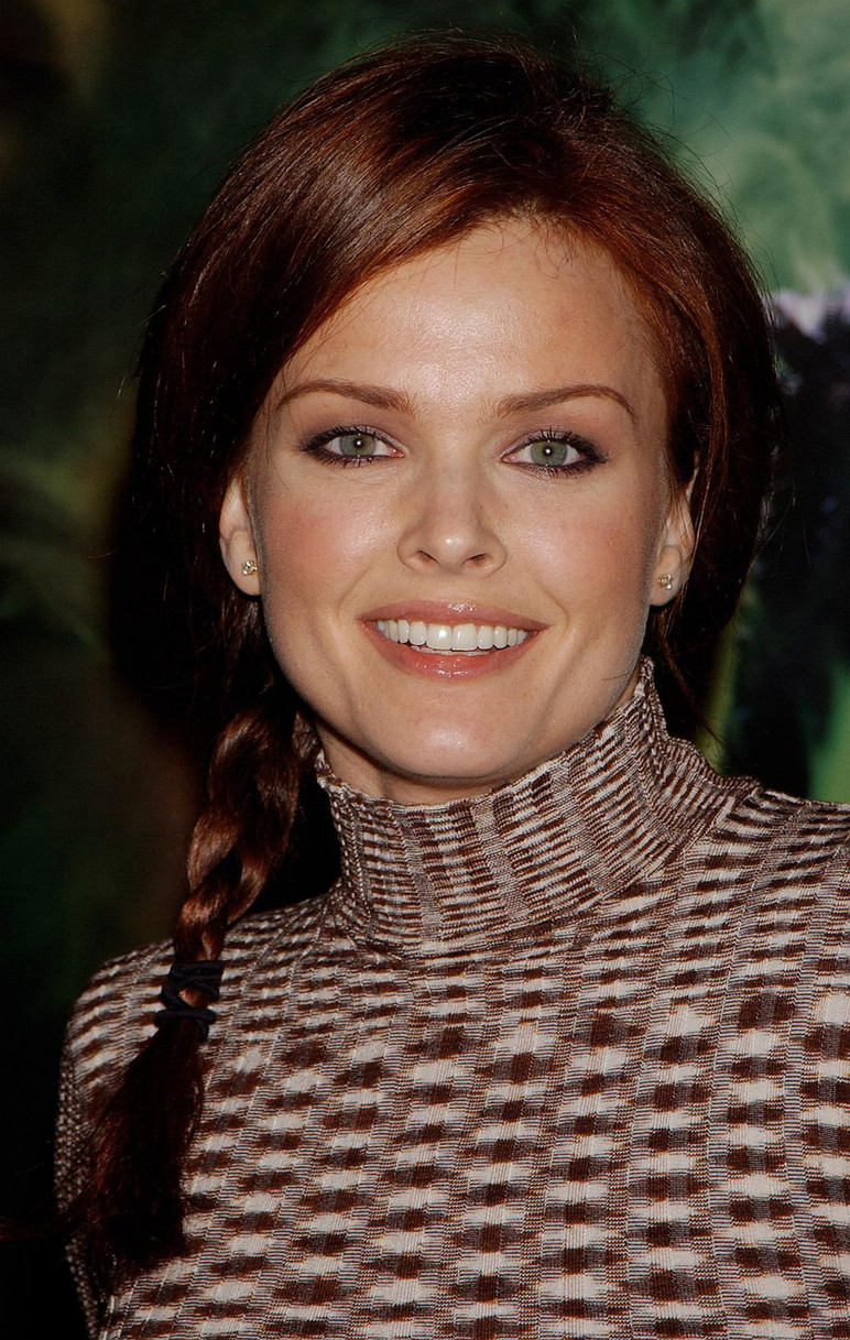 dina meyer husband