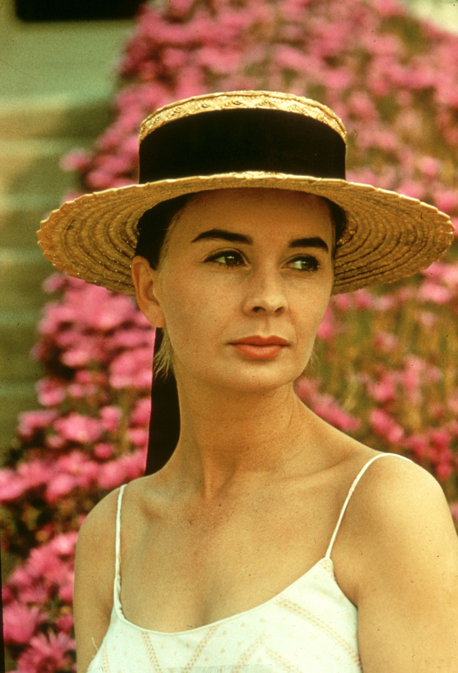 jean simmons sonjean simmons photos, jean simmons and marlon brando, jean simmons stewart granger, jean simmons quotes, jean simmons, jean simmons actress, jean simmons wiki, jean simmons wikipedia, jean simmons thorn birds, jean simmons imdb, jean simmons net worth, jean simmons measurements, jean simmons stewart granger wedding, jean simmons grave, jean simmons tongue, jean simmons son, jean simmons addiction, jean simmons daughters