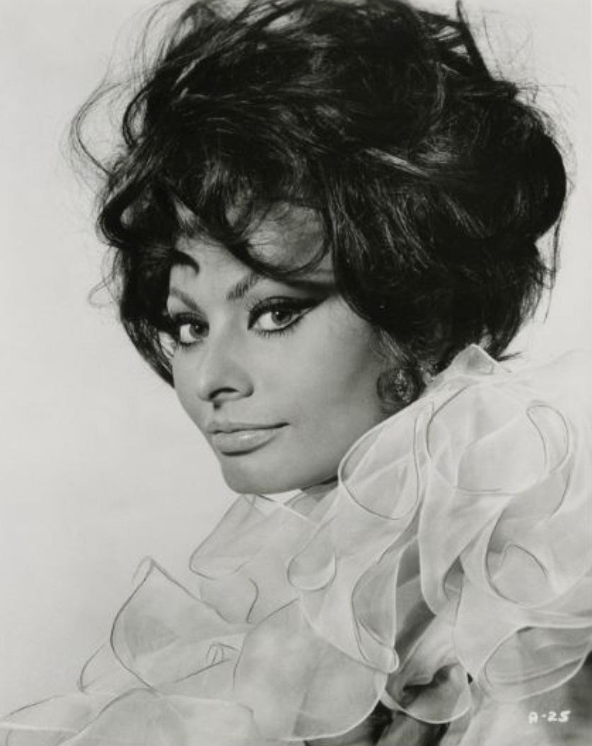 Смотреть фотографию Sophia Loren.
